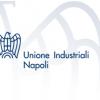 """""""Una nuova stagione di politiche industriali"""": l'Unione degli Industriali di Napoli riflette sull'economia del Sud. Squinzi: """"Il Mezzogiorno al centro della politica economica"""""""