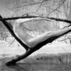 """Fotograficamente parlando: raccontarsi attraverso le immagini. """"Uomo e natura"""", l'armonia degli elementi"""