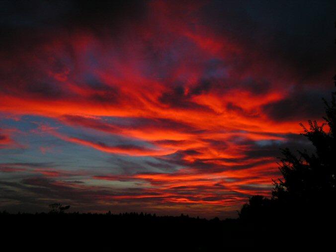 Cielo Rosso Di Notte.Terza Pagina La Ballata Del Cacciatore E Della Fiera