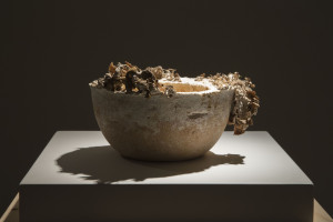 The Future of Plastic ©Officina Corpuscolu  Maurizio Montalti- mycelium fruiting bowl exhibition 2