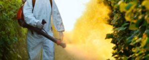 articolo-79-la-commissione-deve-decidere-sul-pesticida-glifosato-della-monsanto